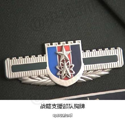 PLASSF badge